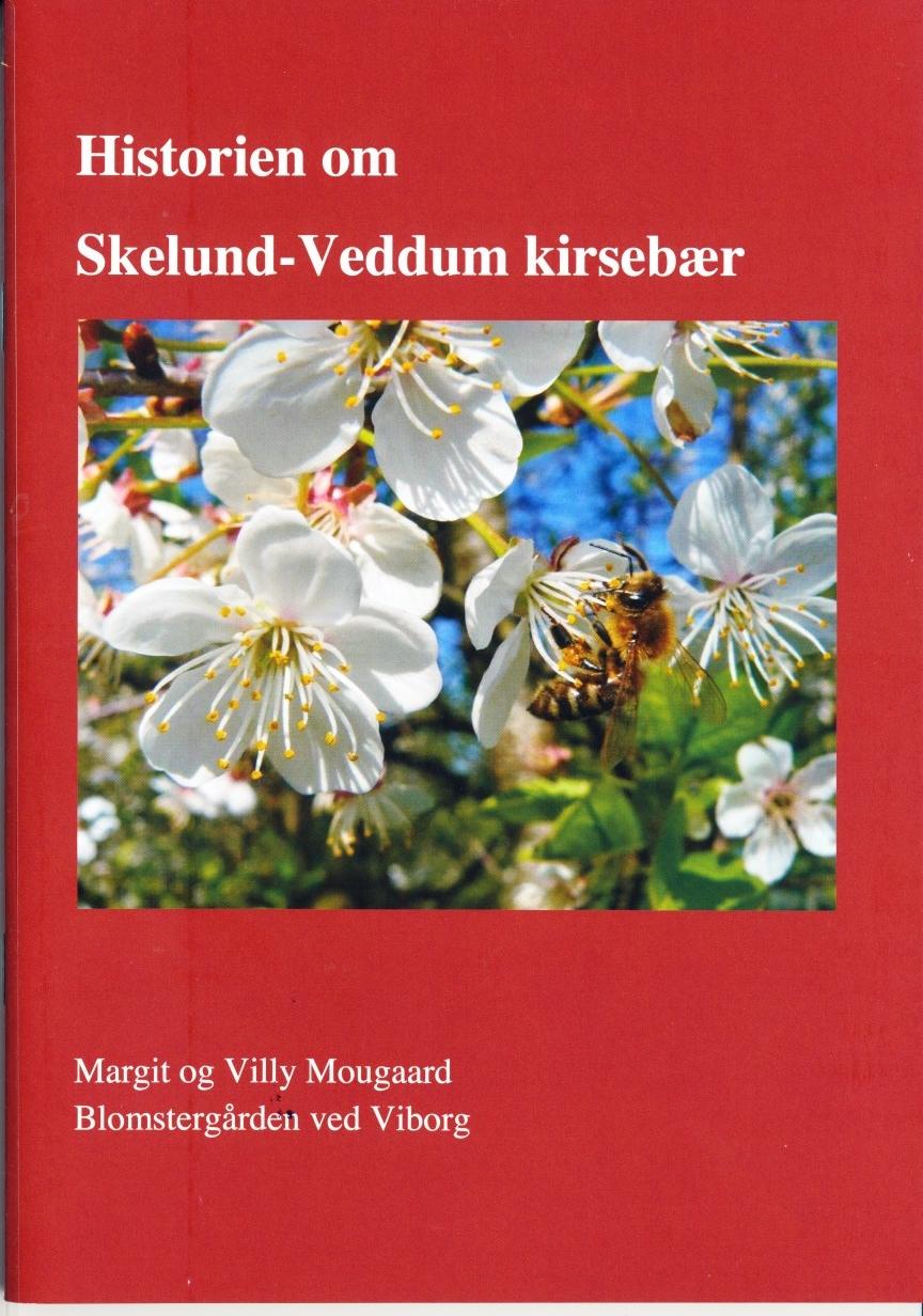 Historien om Skelund-Veddum kirsebær